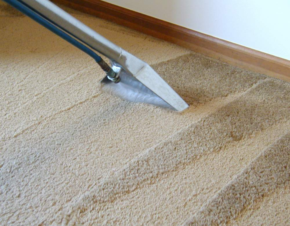 Carpet-Dry Express