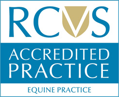 Royal College of Veterinary Surgeons Accredited Equine Practice RCVS
